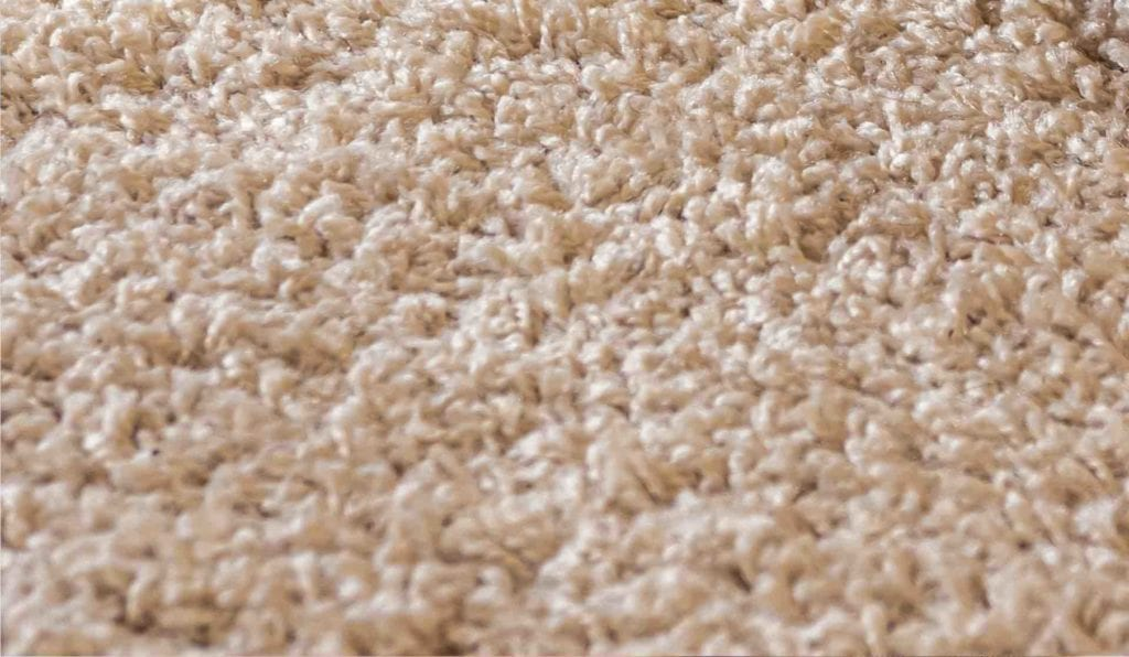 closeup of clean carpet