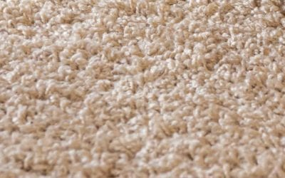 When It Comes To Carpet, What Is Clean?