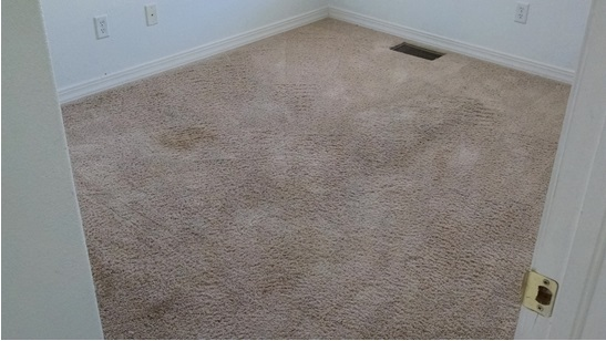 Why Is My Carpet Stiff And Crunchy