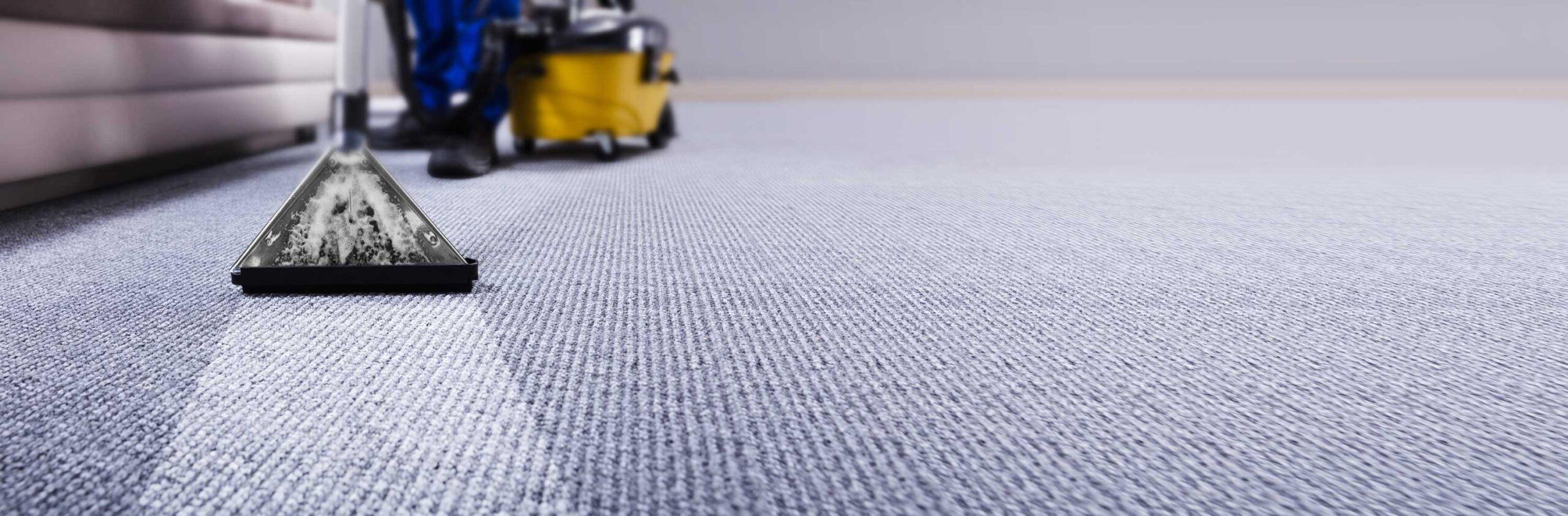 Vacuum cleaning blue carpet